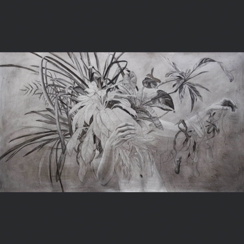 Gawie Joubert Geotropism 2017 Charcoal Paper 107 x 186 cm
